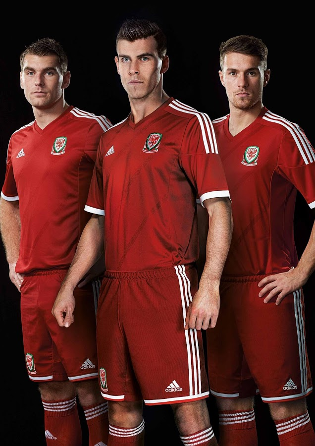 Wales 2014 Home Kit