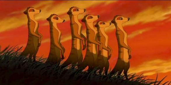 meerkat-lion-king.jpg