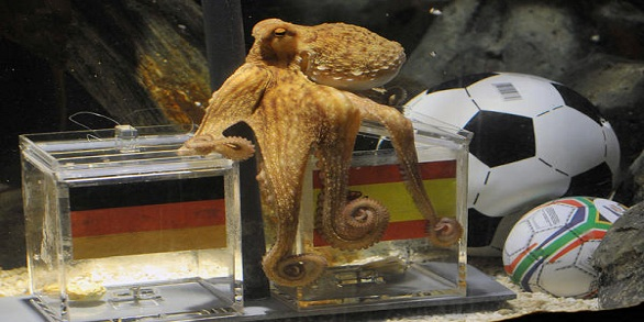 paul-the-octopus_jpg_full_600